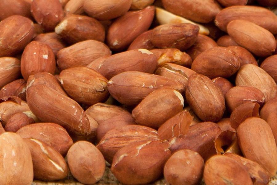 Ramazanda ağız kokusunu giderecek yiyecekler 6