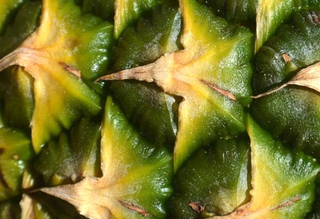 Kabuklarıyla yenirse kanserden koruyan besinler 2
