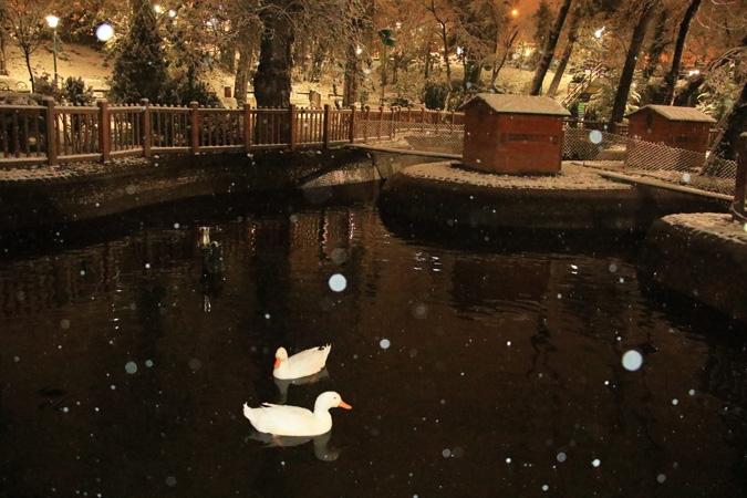 Ankara'da kartpostallık kar manzaraları 9