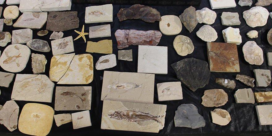Ankara'da Adnan Oktar örgütüne 10 milyon dolarlık fosil kaçakçılığı