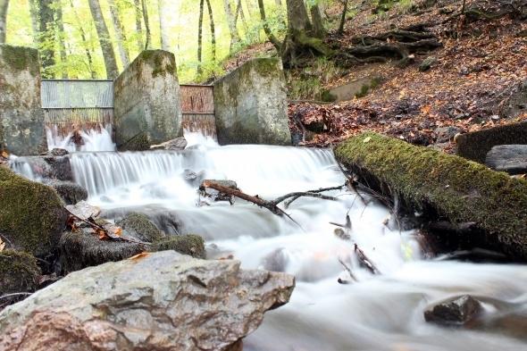 Yedigöller'de sonbahar manzarası hayran bırakıyor 12