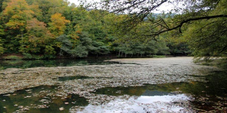 Yedigöller'de sonbahar manzarası hayran bırakıyor