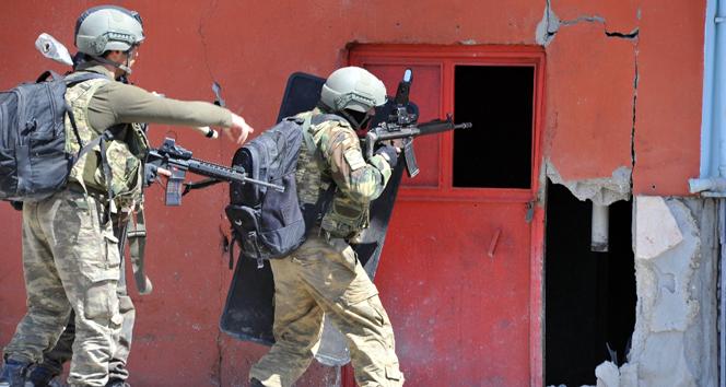 Hakkari'de sekiz PKK'lı daha öldürüldü