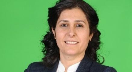 HDP'li eş başkan ve 13 kişi tutuklandı haberi