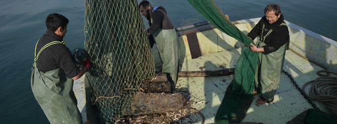 Av yasağı başladı, balık fiyatları arttı
