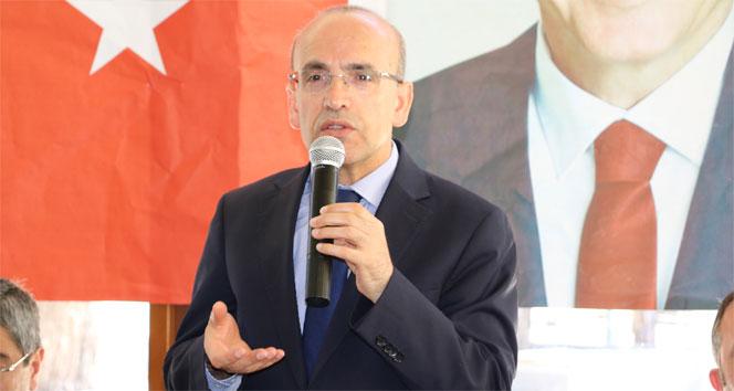 Başbakan Yardımcısı Şimşek, BES rakamlarını açıkladı