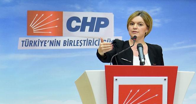 Selin Sayek Böke CHP'deki görevlerinden istifa etti