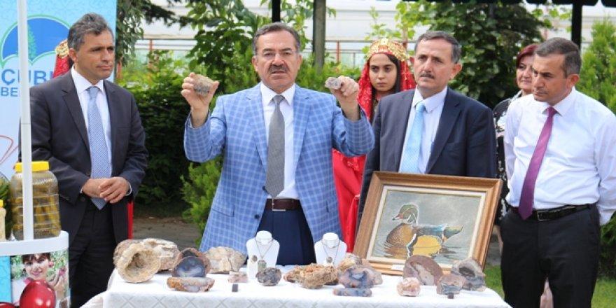 Çubuk'u festival heyecanı sardı