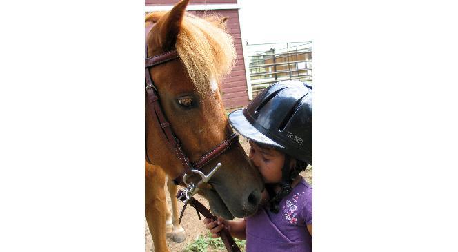 Çankaya Belediyesi'nden 'pony Park'