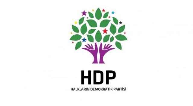 HDP eşbaşkanı gözaltında!