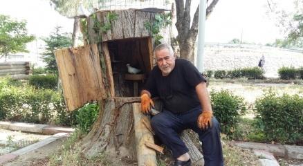 30 santimlik ağaç parçasıyla insanlık dersi