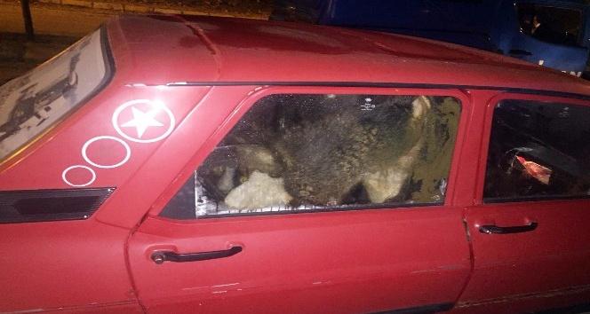 Çubuk'ta hayvan hırsızı 2 kişi tutuklandı