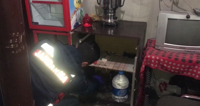 Jandarmadan 36 farklı suça karışan hırsızlık çetesine operasyon