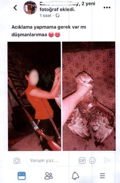 Kızıl şahini öldürüp sosyal medyada paylaşan kadına ceza