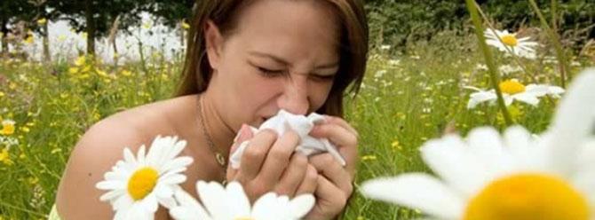 Her 5 genç yetişkinden birinde alerji var!
