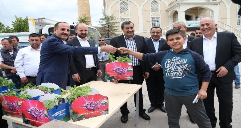 Gölbaşı Belediye Başkanı Fatih Duruay organik fide dağıttı