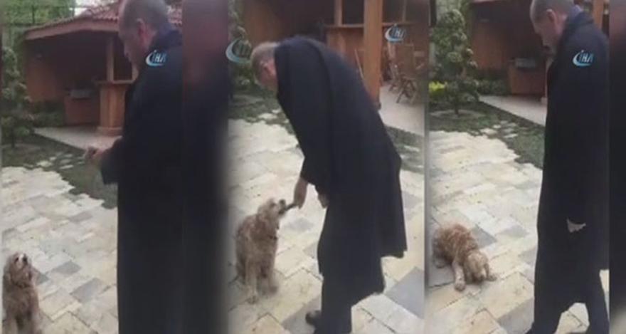 Berat Albayrak'tan Erdoğan paylaşımı geldi