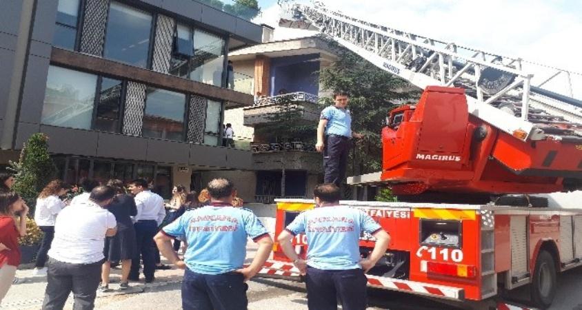 Ankara'da kedi kurtarma operasyonu
