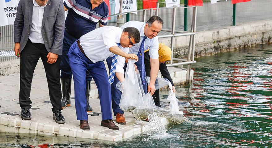 Başkent gölleri balık üretecek