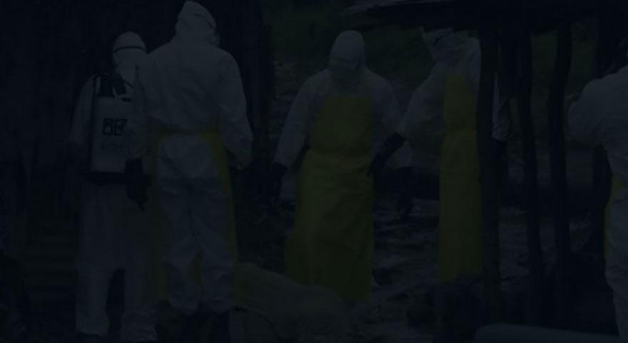 Kars'ta bir köy kuduz riskiyle karantinaya alındı