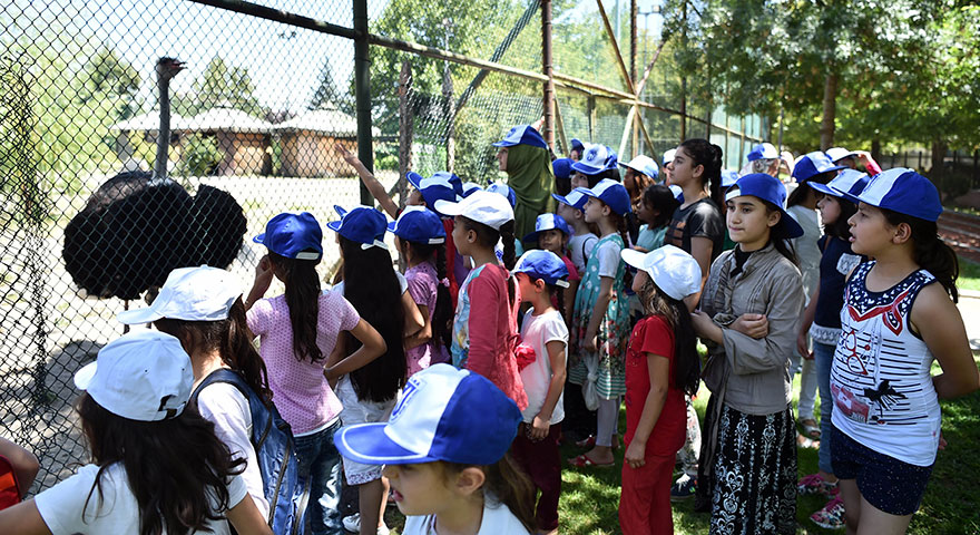 Sokakta çalışan çocuklar Hayvan Parkı'nda