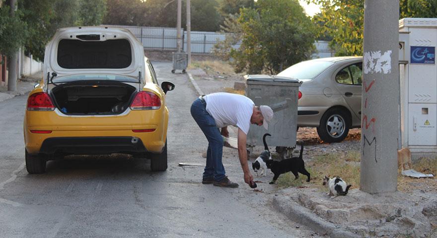 Hayvansever taksiciden insanlık dersi