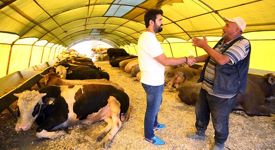 Ankaralılar Yakacık'ta pazarlığa tutuştu