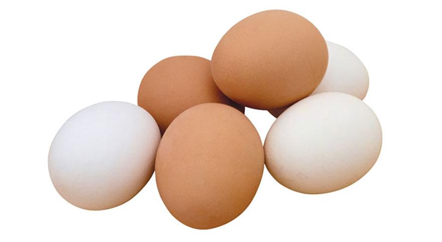Tavuk yumurtası üretimi yüzde 5,5 azaldı