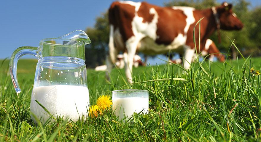 Süt fiyatları arttı! İşte yeni litre fiyatı