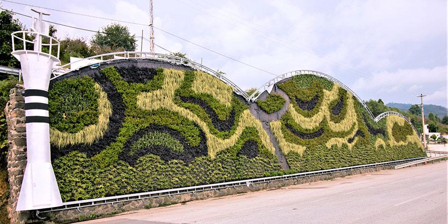 Karadeniz'in ilk dikey bahçesi Ordu'da