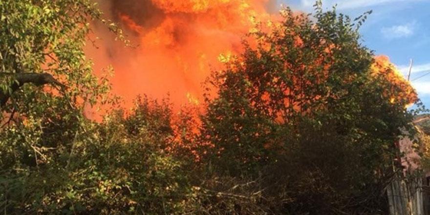 Kastamonu'da yangın, 8 ev küle döndü