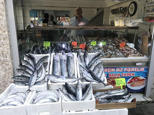 Torik balıkları 120 TL'den tezgahlarda