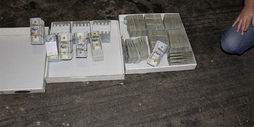 Baklavadan çıkan dolarlar şaşırttı!
