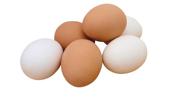 Tavuk yumurtası üretimi Mayıs ayında azaldı