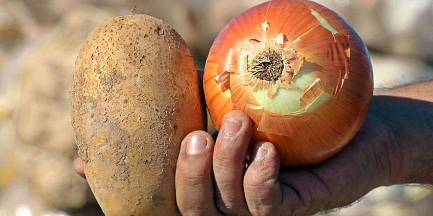 Soğan ve patates cep yakacak!