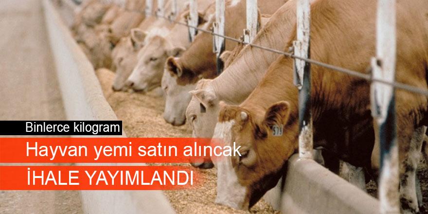 Hayvan yemi satın alınacaktır