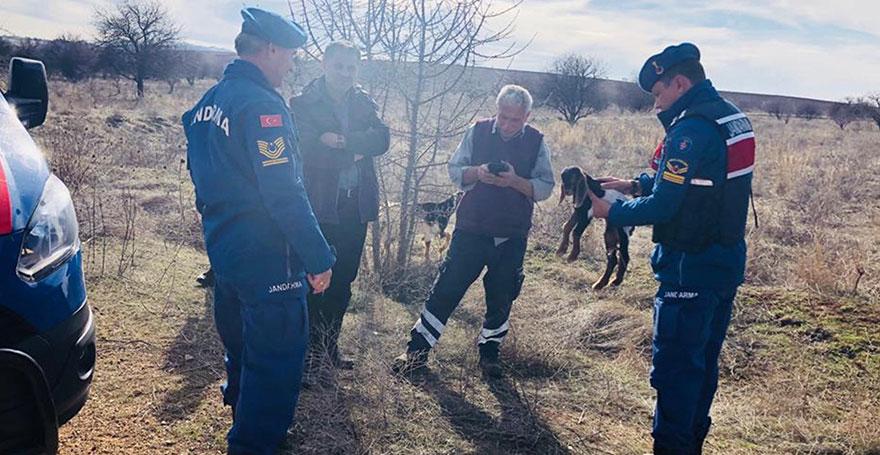 Sürüden kaçan keçi ve oğlağı jandarma buldu