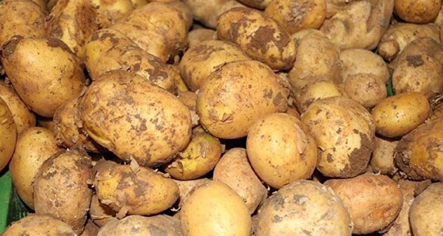 Üç günlük patates diyetiyle kilolarınızdan kurtulun
