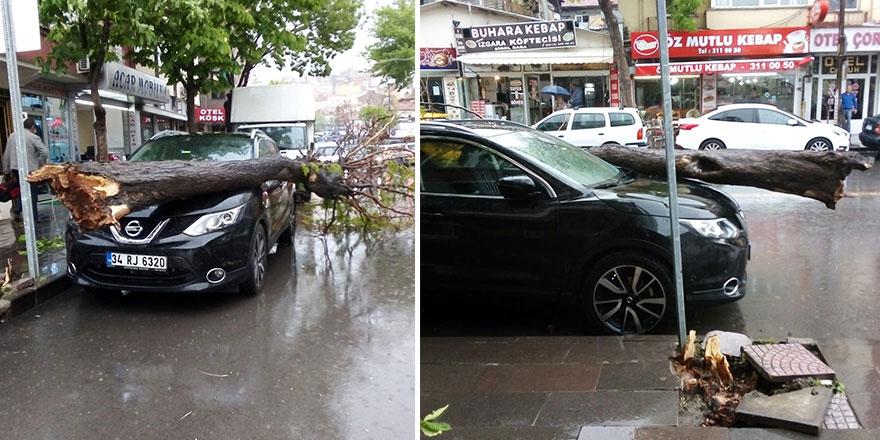 Başkent'te ağaç otomobilin üzerine devrildi