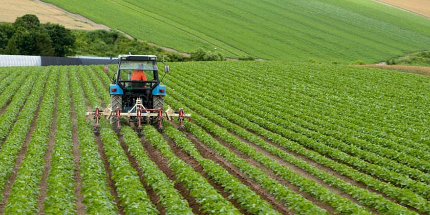 Ayaş'ta yürütülecek tarım projesi ülkenin tamamına yayılacak