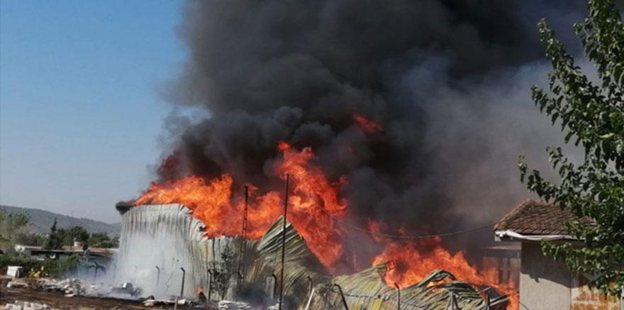 İzmir'de palet fabrikasında yangın çıktı