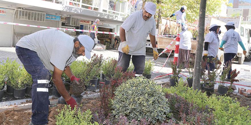 Ankara Büyükşehir Belediyesi ve Çankaya Belediyesi'nden ortak çalışma