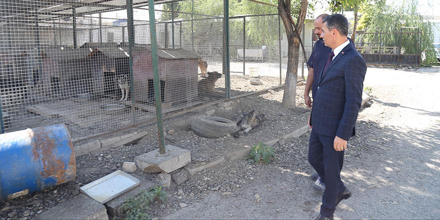 Başkan Şimşek: Hayvan barınağı Gölbaşı'ndan bir an önce taşınmalı