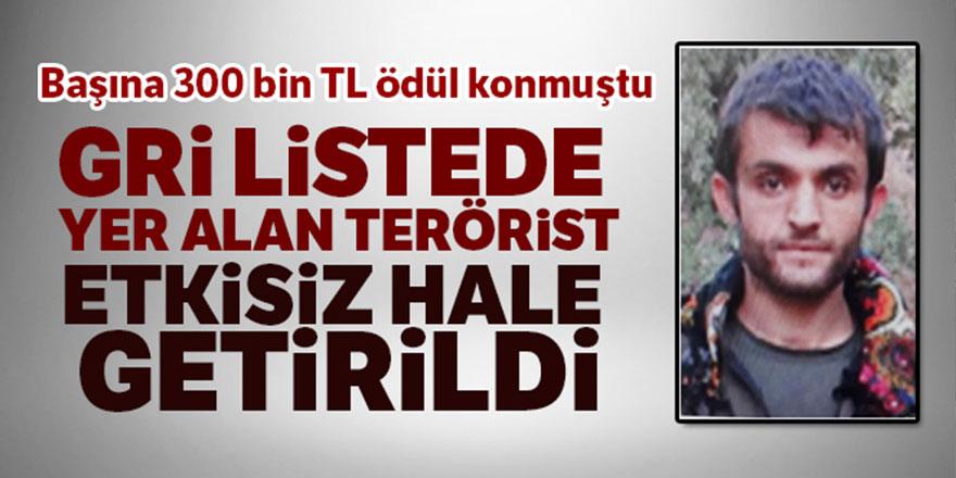 Başına 300 bin TL konan terörist etkisiz hale getirildi