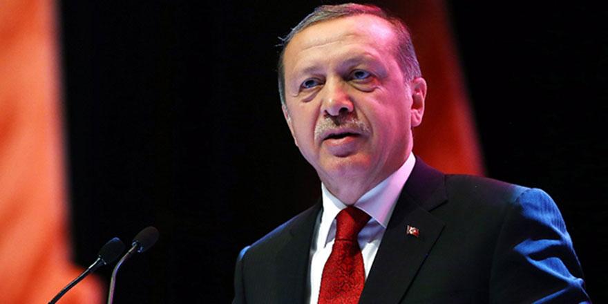 Cumhurbaşkanı Erdoğan'ın termik santral açıklaması