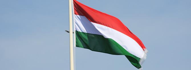 Macaristan FETÖ kuruluşları hakkında inceleme başlatacak