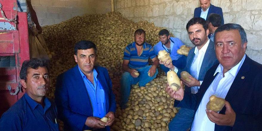 """Gürer: """"Patates ve soğanın ihracı engellenerek sorun çözülemez"""""""