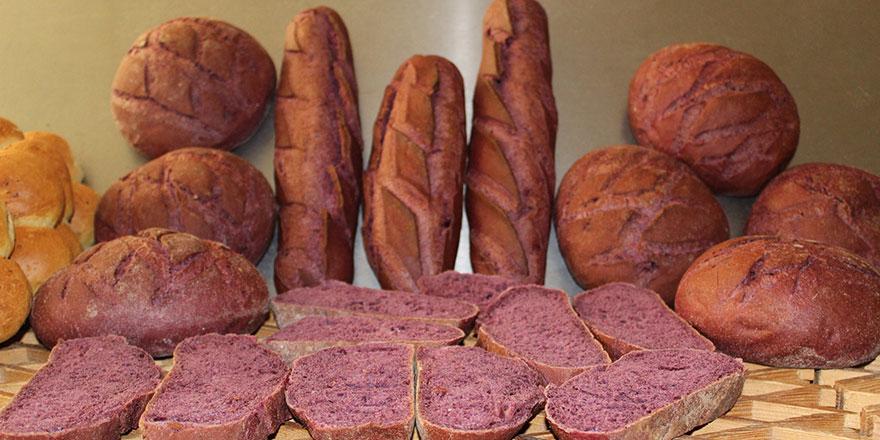 Ankara'da mor ekmek üretimi başladı