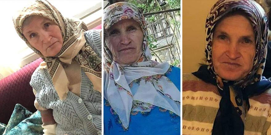 Nallıhan'da kaybolan Fatma Uykun'u arama çalışmaları sürüyor