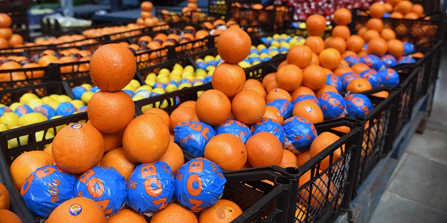 Başkent'te portakal satışı rekor kırdı